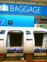 ANA Baggage Drop